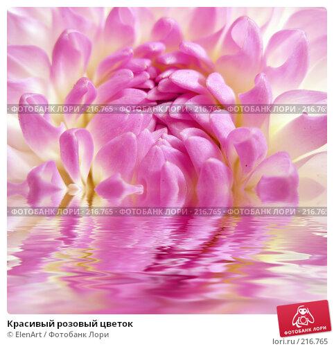 Купить «Красивый розовый цветок», фото № 216765, снято 24 марта 2018 г. (c) ElenArt / Фотобанк Лори