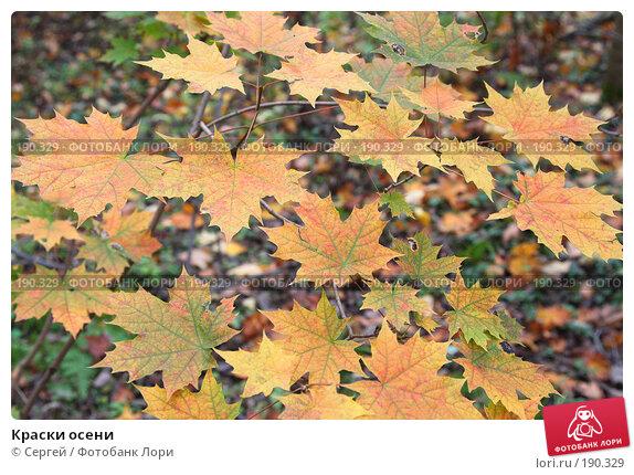Купить «Краски осени», фото № 190329, снято 6 октября 2007 г. (c) Сергей / Фотобанк Лори