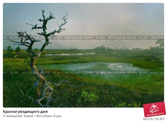 Краски уходящего дня , фото № 16357, снято 22 июля 2017 г. (c) Aleksander Kaasik / Фотобанк Лори