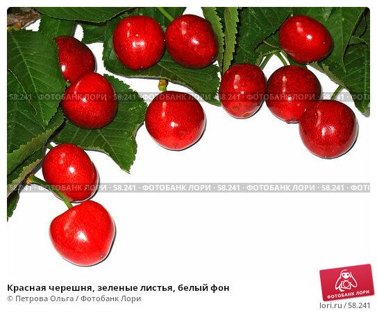 Красная черешня, зеленые листья, белый фон, фото № 58241, снято 20 июня 2007 г. (c) Петрова Ольга / Фотобанк Лори