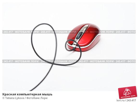 Красная компьютерная мышь, фото № 243417, снято 27 февраля 2008 г. (c) Tatiana Lykova / Фотобанк Лори
