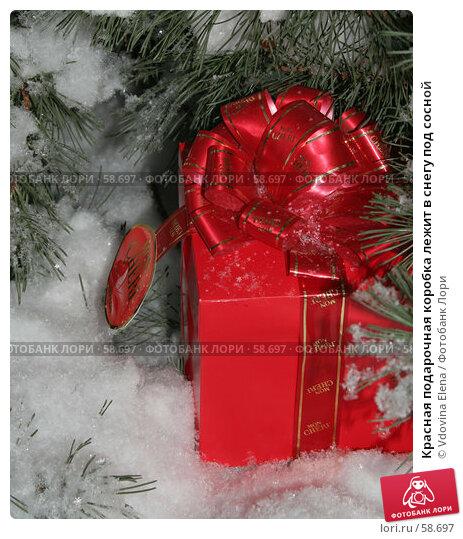 Красная подарочная коробка лежит в снегу под сосной, фото № 58697, снято 30 ноября 2006 г. (c) Vdovina Elena / Фотобанк Лори