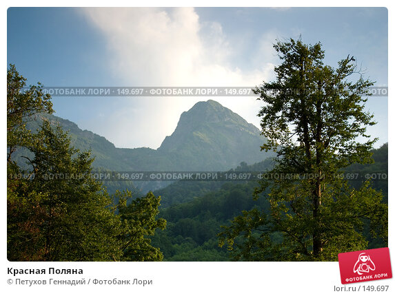Купить «Красная Поляна», фото № 149697, снято 13 августа 2007 г. (c) Петухов Геннадий / Фотобанк Лори