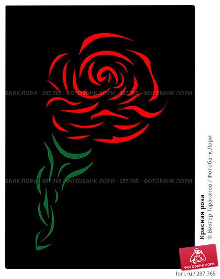 Красная роза, эксклюзивное фото № 287765, снято 25 октября 2016 г. (c) Виктор Тараканов / Фотобанк Лори