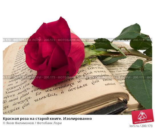 Красная роза на старой книге. Изолированно, фото № 200173, снято 8 февраля 2008 г. (c) Яков Филимонов / Фотобанк Лори