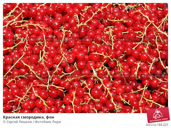 Купить «Красная смородина, фон», фото № 84221, снято 22 июля 2007 г. (c) Сергей Лешков / Фотобанк Лори