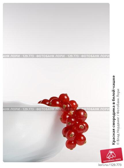 Красная смородина в белой чашке, фото № 129773, снято 24 ноября 2007 г. (c) Влад Нордвинг / Фотобанк Лори