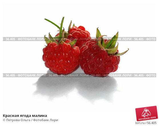 Красная ягода малина, фото № 56405, снято 21 июля 2006 г. (c) Петрова Ольга / Фотобанк Лори