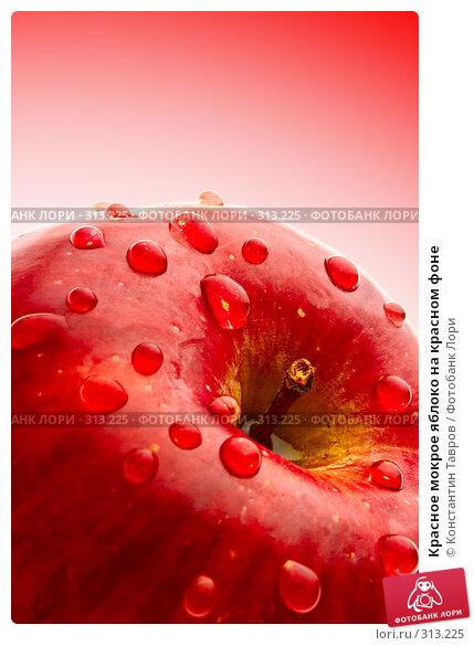 Купить «Красное мокрое яблоко на красном фоне», фото № 313225, снято 5 апреля 2008 г. (c) Константин Тавров / Фотобанк Лори
