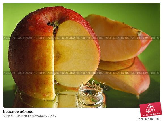 Красное яблоко, фото № 103189, снято 27 октября 2016 г. (c) Иван Сазыкин / Фотобанк Лори