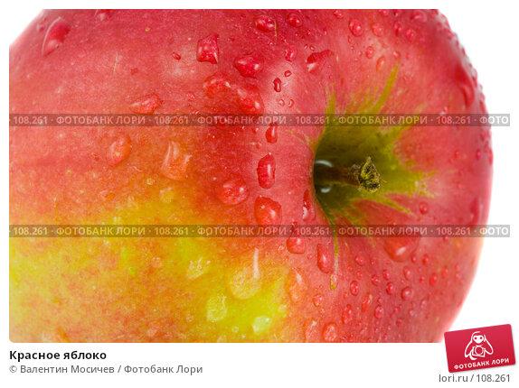 Красное яблоко, фото № 108261, снято 31 марта 2007 г. (c) Валентин Мосичев / Фотобанк Лори