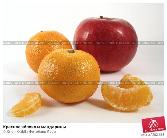 Купить «Красное яблоко и мандарины», фото № 202665, снято 14 февраля 2008 г. (c) Kribli-Krabli / Фотобанк Лори