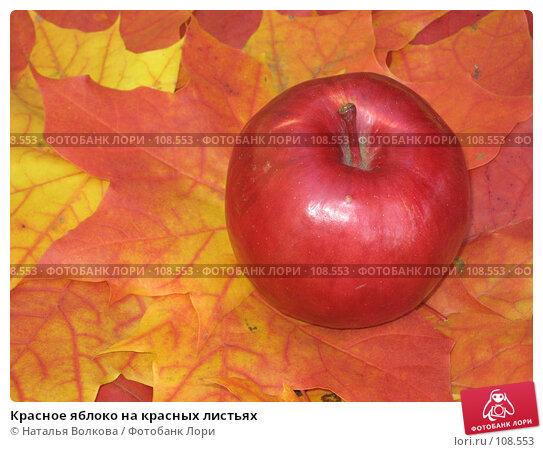 Красное яблоко на красных листьях, эксклюзивное фото № 108553, снято 22 сентября 2007 г. (c) Наталья Волкова / Фотобанк Лори