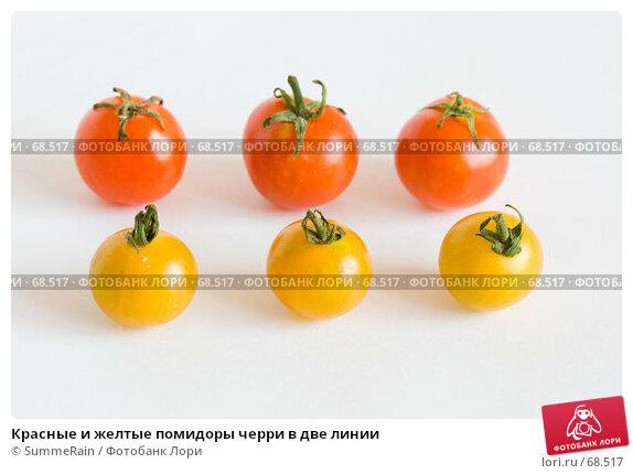 Красные и желтые помидоры черри в две линии, фото № 68517, снято 21 октября 2016 г. (c) SummeRain / Фотобанк Лори