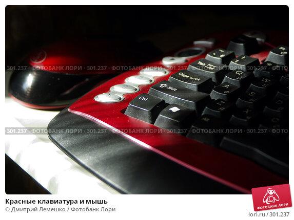 Красные клавиатура и мышь, фото № 301237, снято 17 мая 2008 г. (c) Дмитрий Лемешко / Фотобанк Лори