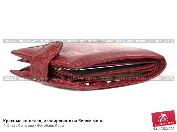 Красные кошелек, изолировано на белом фоне, фото № 282209, снято 27 марта 2008 г. (c) Ольга Сапегина / Фотобанк Лори