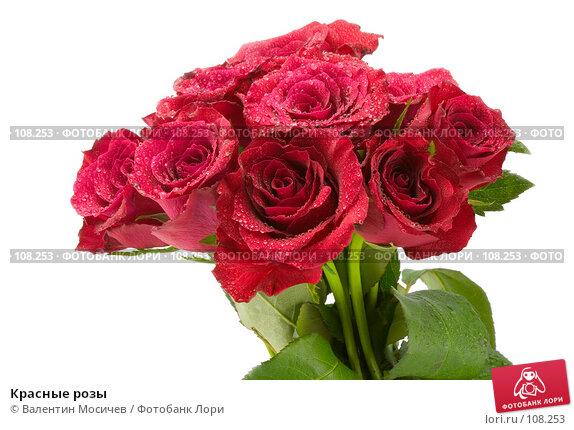 Купить «Красные розы», фото № 108253, снято 31 марта 2007 г. (c) Валентин Мосичев / Фотобанк Лори