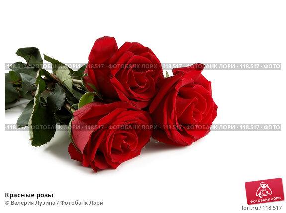 Красные розы, фото № 118517, снято 16 ноября 2007 г. (c) Валерия Потапова / Фотобанк Лори