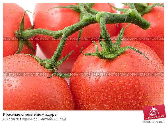 Красные спелые помидоры, фото № 97869, снято 12 октября 2007 г. (c) Алексей Судариков / Фотобанк Лори
