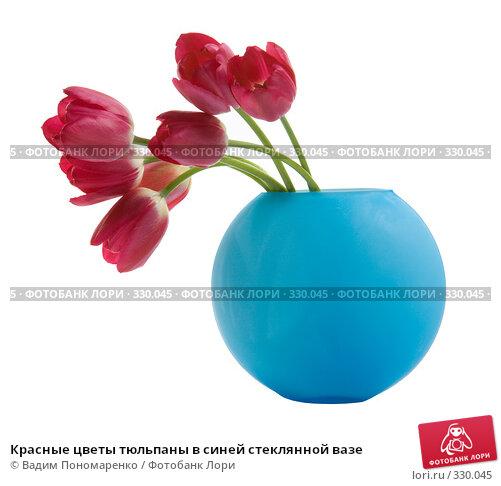 Красные цветы тюльпаны в синей стеклянной вазе, фото № 330045, снято 27 мая 2008 г. (c) Вадим Пономаренко / Фотобанк Лори