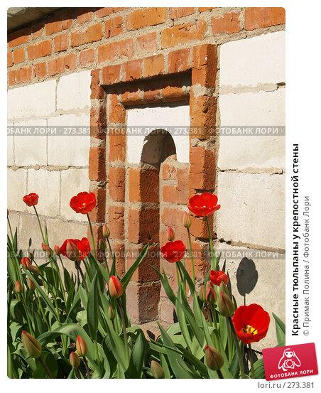 Красные тюльпаны у крепостной стены, фото № 273381, снято 26 апреля 2008 г. (c) Примак Полина / Фотобанк Лори
