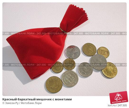 Купить «Красный бархатный мешочек с монетами», фото № 247505, снято 3 апреля 2008 г. (c) Заноза-Ру / Фотобанк Лори