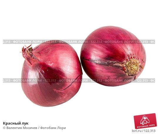 Купить «Красный лук», фото № 122313, снято 13 января 2007 г. (c) Валентин Мосичев / Фотобанк Лори