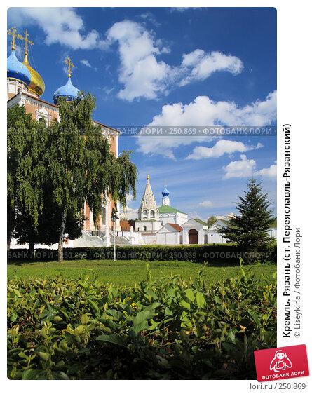Кремль. Рязань (ст. Переяславль-Рязанский), фото № 250869, снято 24 июля 2006 г. (c) Liseykina / Фотобанк Лори