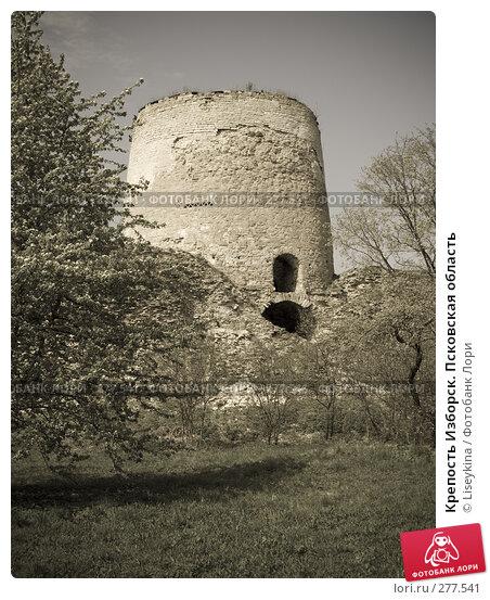 Крепость Изборск. Псковская область, фото № 277541, снято 2 мая 2008 г. (c) Liseykina / Фотобанк Лори