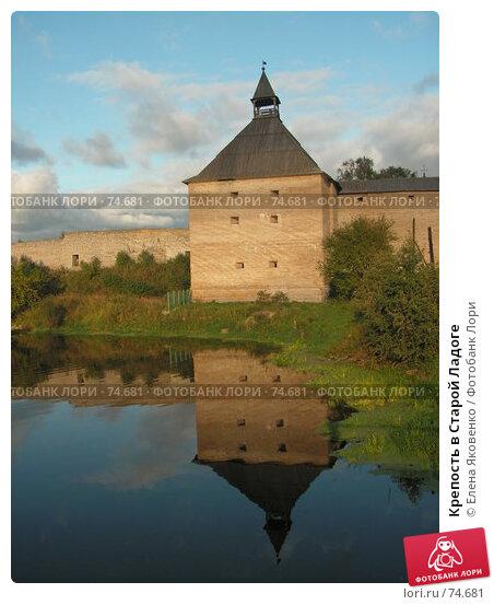 Крепость в Старой Ладоге, фото № 74681, снято 20 января 2005 г. (c) Елена Яковенко / Фотобанк Лори