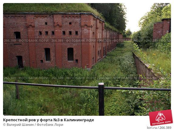 Крепостной ров у форта №3 в Калининграде, фото № 266389, снято 22 июля 2007 г. (c) Валерий Шанин / Фотобанк Лори