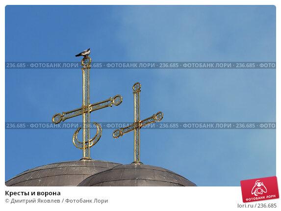 Кресты и ворона, фото № 236685, снято 12 августа 2007 г. (c) Дмитрий Яковлев / Фотобанк Лори