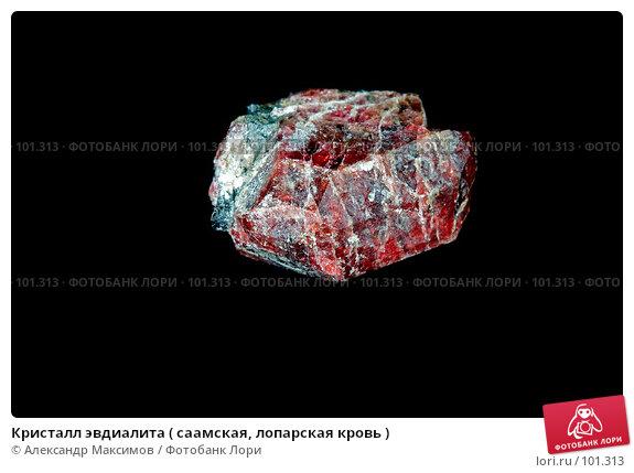 Кристалл эвдиалита ( саамская, лопарская кровь ), фото № 101313, снято 25 ноября 2006 г. (c) Александр Максимов / Фотобанк Лори