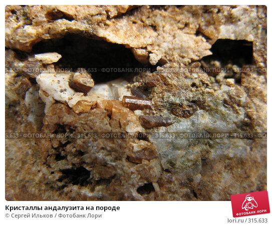 Кристаллы андалузита на породе, фото № 315633, снято 7 июня 2008 г. (c) Сергей Ильков / Фотобанк Лори
