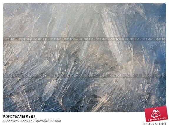 Кристаллы льда, фото № 311441, снято 24 октября 2016 г. (c) Алексей Волков / Фотобанк Лори