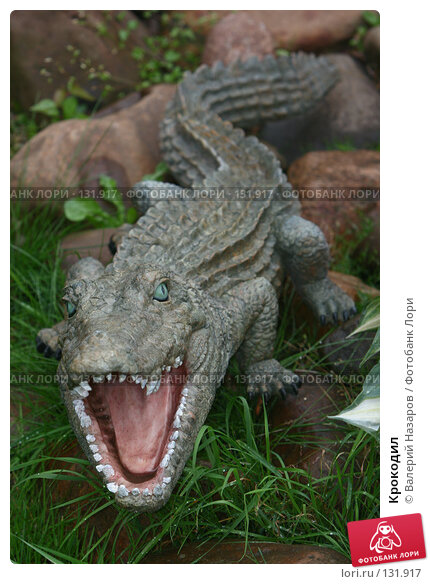 Крокодил, фото № 131917, снято 10 июля 2007 г. (c) Валерий Назаров / Фотобанк Лори