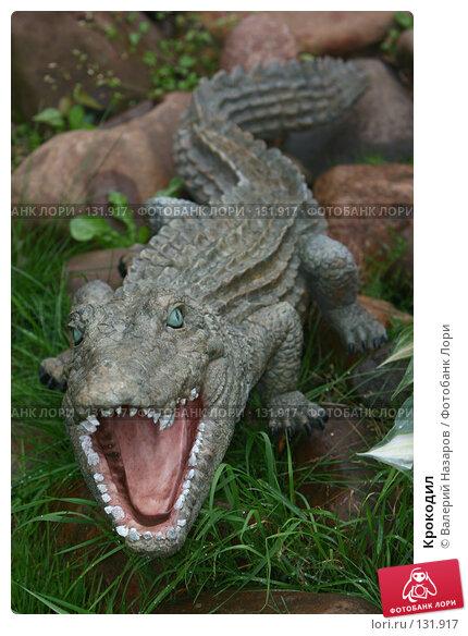 Крокодил, фото № 131917, снято 10 июля 2007 г. (c) Валерий Торопов / Фотобанк Лори