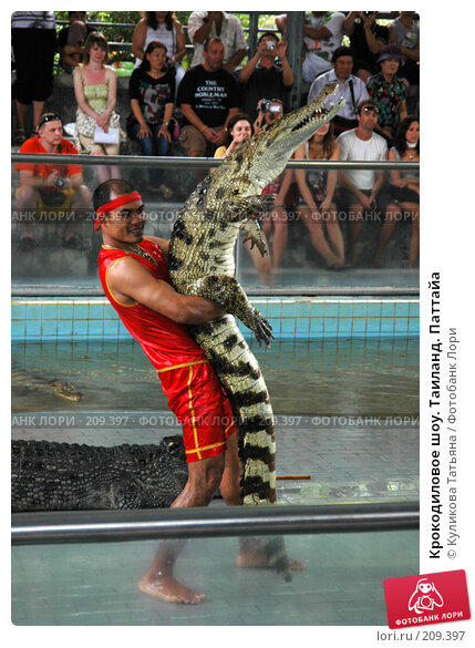 Крокодиловое шоу. Таиланд. Паттайа, фото № 209397, снято 30 ноября 2005 г. (c) Куликова Татьяна / Фотобанк Лори