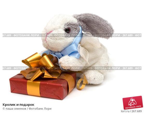 Кролик и подарок, фото № 267689, снято 26 марта 2008 г. (c) паша семенов / Фотобанк Лори