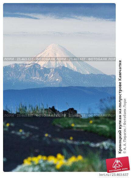 Купить «Кроноцкий вулкан на полуострове Камчатке», фото № 23463637, снято 25 июня 2016 г. (c) А. А. Пирагис / Фотобанк Лори