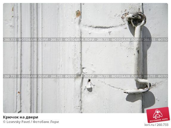 Крючок на двери, фото № 260733, снято 23 марта 2017 г. (c) Losevsky Pavel / Фотобанк Лори