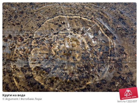 Круги на воде, фото № 222037, снято 23 февраля 2008 г. (c) Argument / Фотобанк Лори