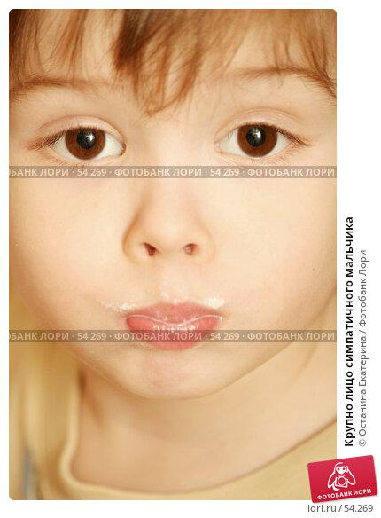 Крупно лицо симпатичного мальчика, фото № 54269, снято 13 декабря 2006 г. (c) Останина Екатерина / Фотобанк Лори