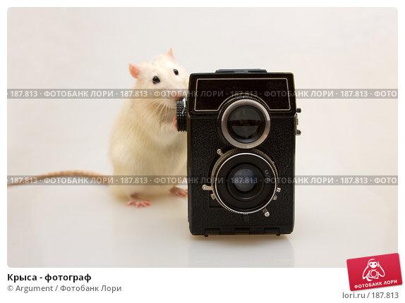 Крыса - фотограф, фото № 187813, снято 27 января 2008 г. (c) Argument / Фотобанк Лори