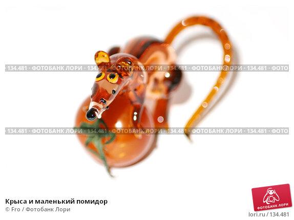 Купить «Крыса и маленький помидор», фото № 134481, снято 30 ноября 2007 г. (c) Fro / Фотобанк Лори