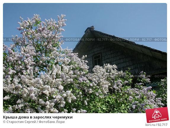 Крыша дома в зарослях черемухи, фото № 92717, снято 28 мая 2007 г. (c) Старостин Сергей / Фотобанк Лори