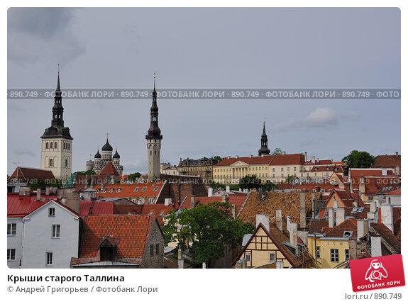 Крыши старого Таллина (2009 год). Стоковое фото, фотограф Андрей Григорьев / Фотобанк Лори