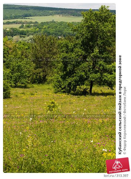Кубанский сельский пейзаж в предгорной зоне, фото № 313397, снято 4 июня 2008 г. (c) Федор Королевский / Фотобанк Лори