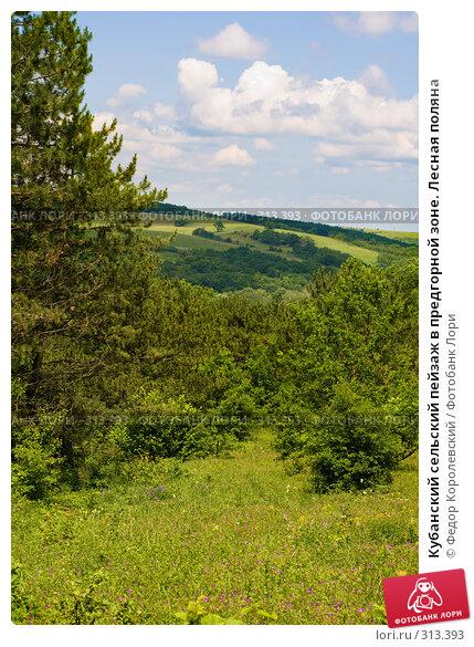 Купить «Кубанский сельский пейзаж в предгорной зоне. Лесная поляна», фото № 313393, снято 4 июня 2008 г. (c) Федор Королевский / Фотобанк Лори