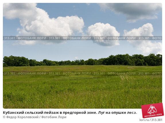 Кубанский сельский пейзаж в предгорной зоне. Луг на опушке леса., фото № 313381, снято 4 июня 2008 г. (c) Федор Королевский / Фотобанк Лори